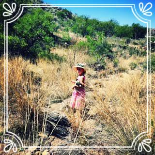 Parenting, Life Coaching, Arizona, Tucson, Equine Facilitated Learning, Erin Menut